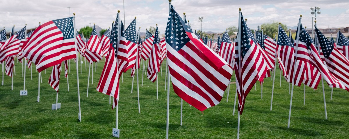 USA flags on green grass during day time